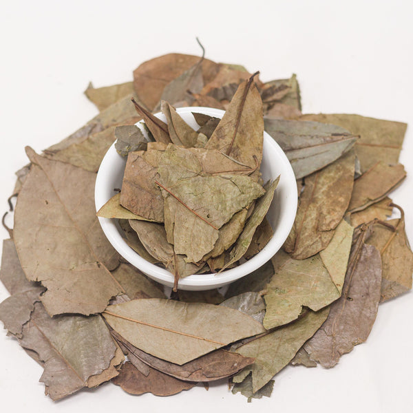 Dry Soursop Leaves