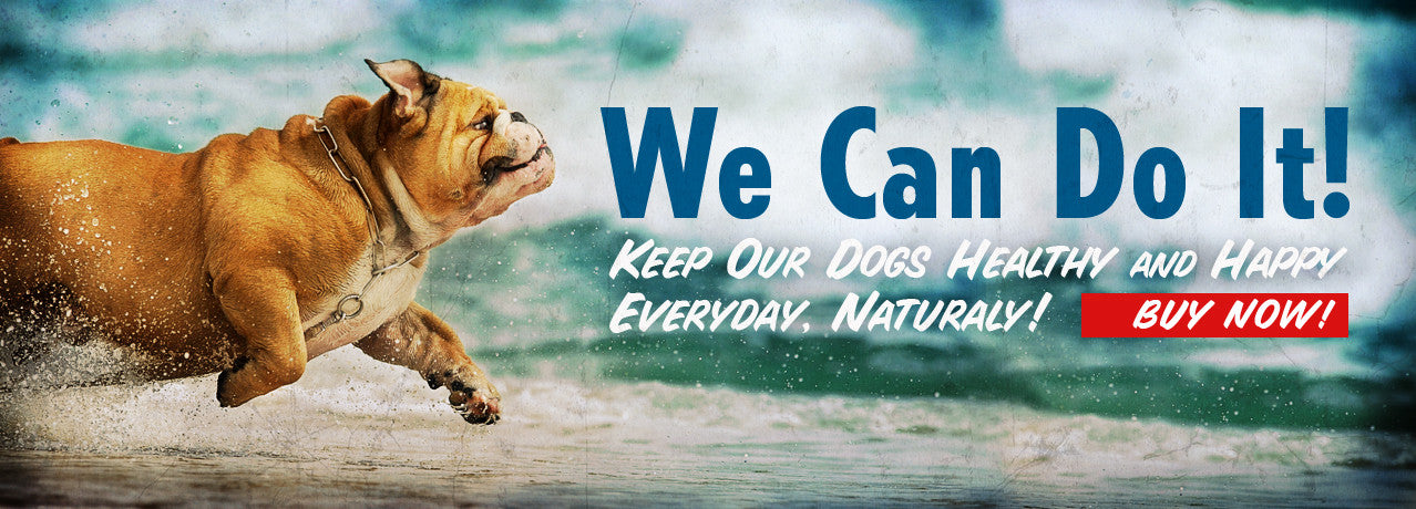 Natural Dog Treats to make dogs happy and healthy