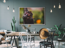 Afbeelding in Gallery-weergave laden, Monkey Business, Thailand