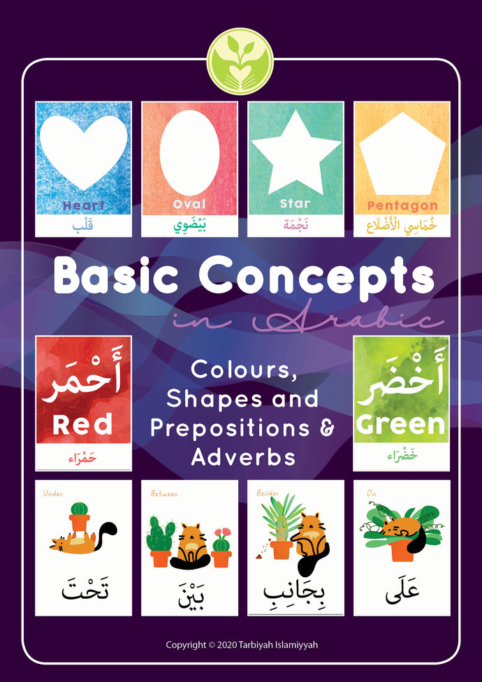 Basic Concept Flashcards in Arabic (Digital Download)