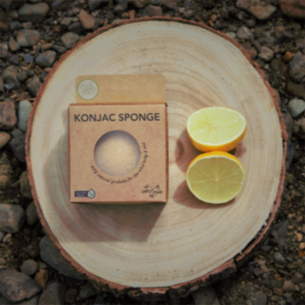 Nudi Point Citrus Konjac Sponge