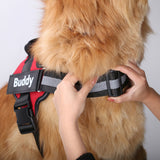 Comfortable Reflective All-Purpose Harness with Custom Patch