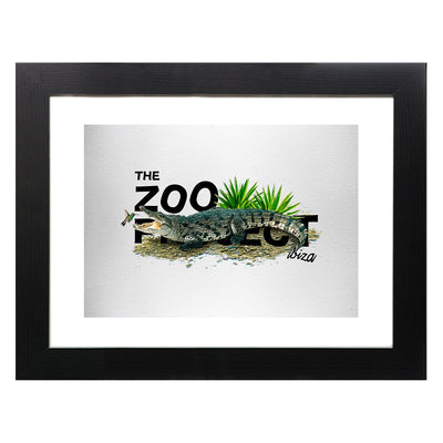 Crocodile And Humming Bird Framed Print