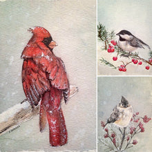 Load image into Gallery viewer, Winter Birds- Boxed Set