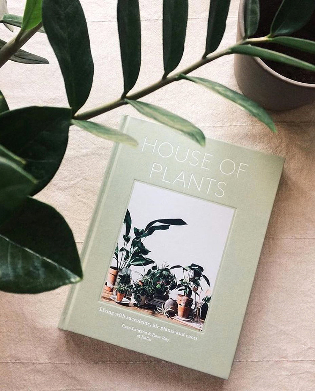 Libro House of Plants de Caro Langton y Rose Ray