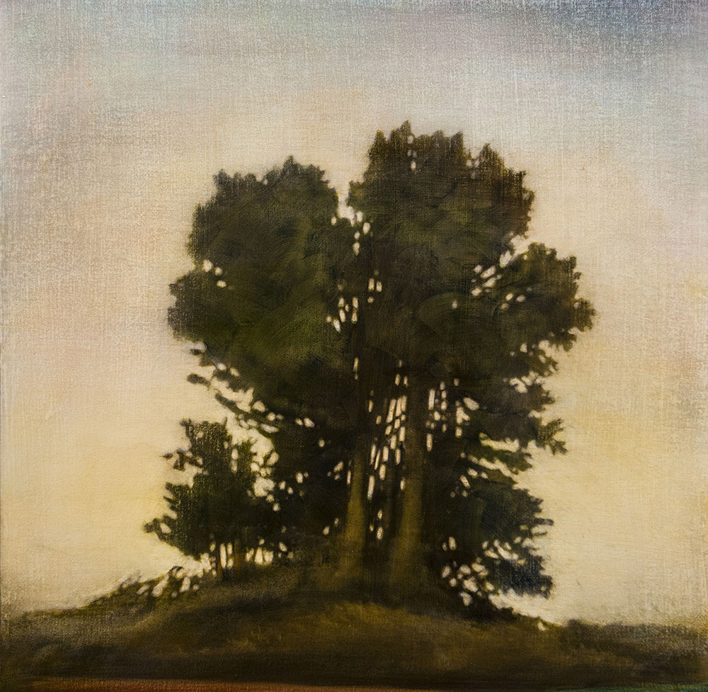 Stephen Hutchings artwork 'TREES #1' available at Canada House Gallery - Banff, Alberta