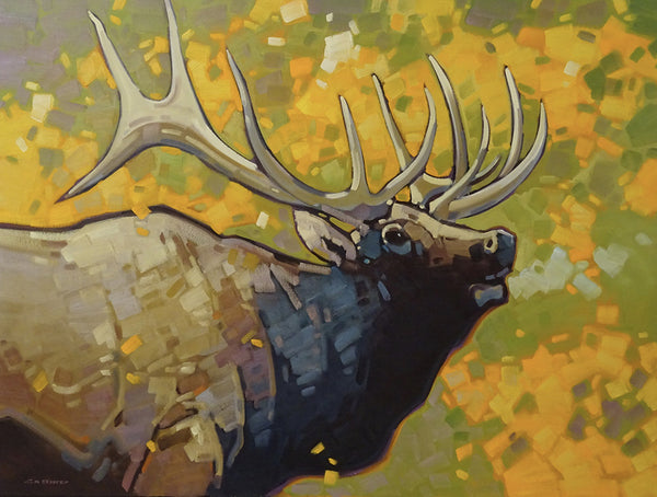 Cameron Bird artwork 'MORNING CALL - ELK' available at Canada House Gallery - Banff, Alberta