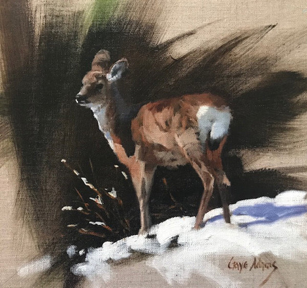 Gaye Adams artwork 'SUNLIT WHITETAIL' available at Canada House Gallery - Banff, Alberta