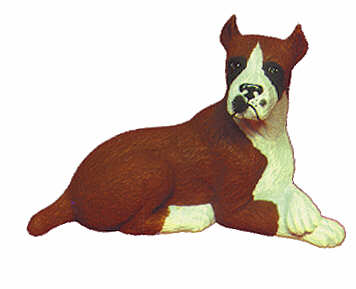#1735 Small Dog - Boxer  4 1-2