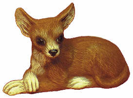#1739 Small Dog - Chihuahua  4