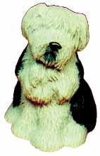 #1742 Small Dog - Sheep Dog  3 1-2