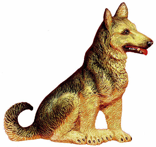 #2269 Large Dog - German Shepherd  6 3-4