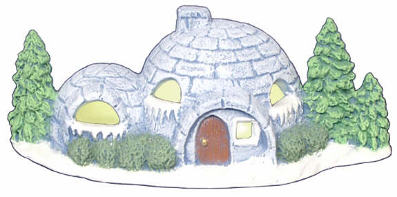 #2947 Igloo Home (Large)  5 3-4