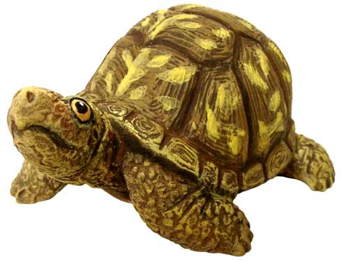 #3257 Box Turtle (Small), Head Up  3 1-2