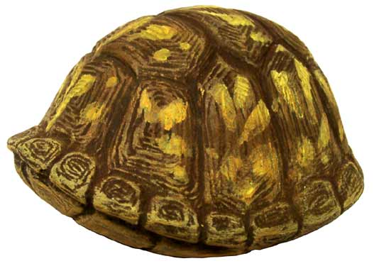 #3260 Box Turtle (Small), Closed Up  2 1-2
