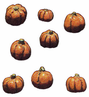 #940 Eight Small Pumpkins  Approximately 1-2