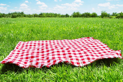 Why not make and enjoy spring's first picnic?