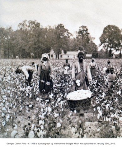 History of Cotton Fields Slavery & Child Labor in Georgia, USA- FlaxLinen Blog