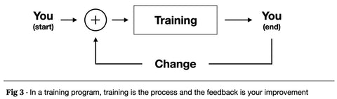 An image of training in the form of a feedback loop