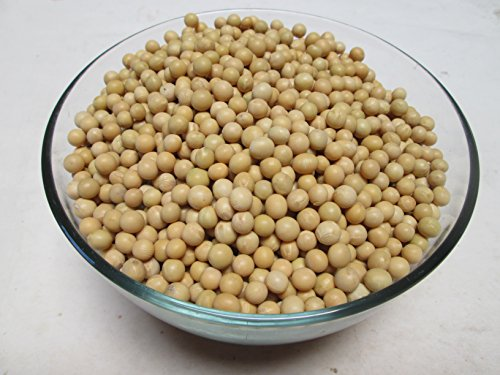 Organic Raw Soybeans, 5 lb