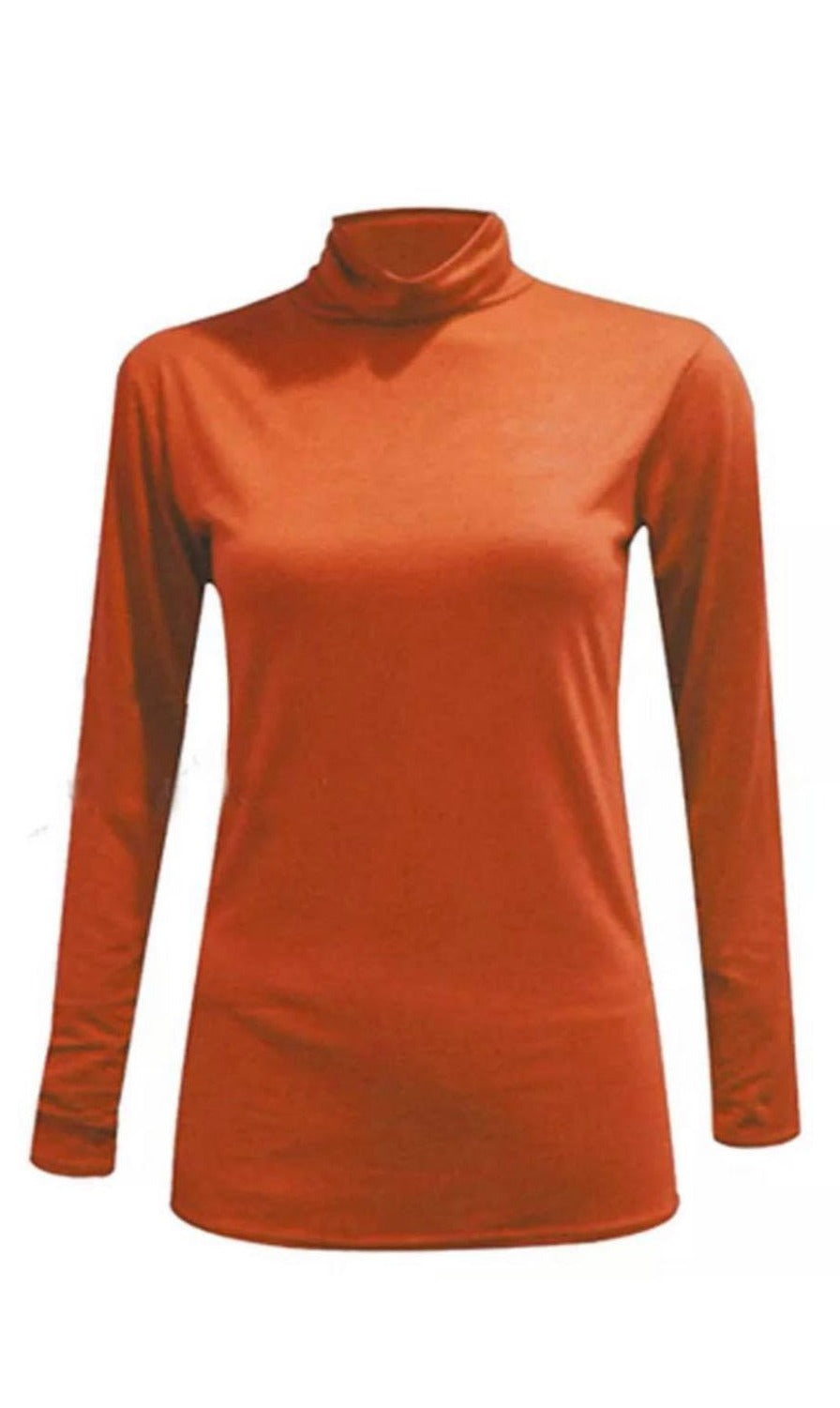 Rust Long Sleeved Jersey Turtle Neck Top