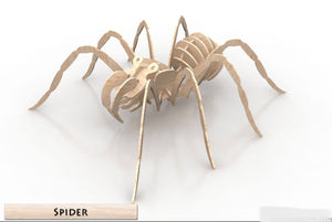 3D Puzzle- Insect Collection: Spider
