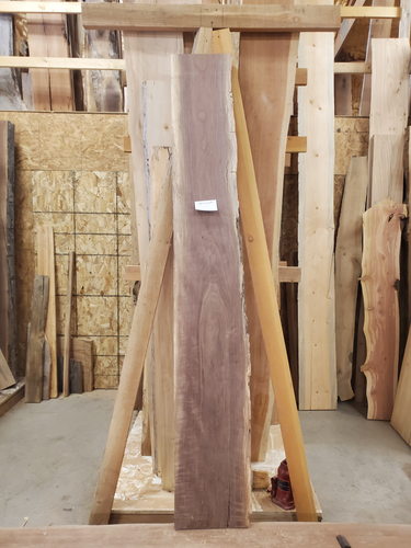 Walnut slab 12