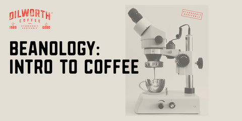 Beanology - Intro to Coffe