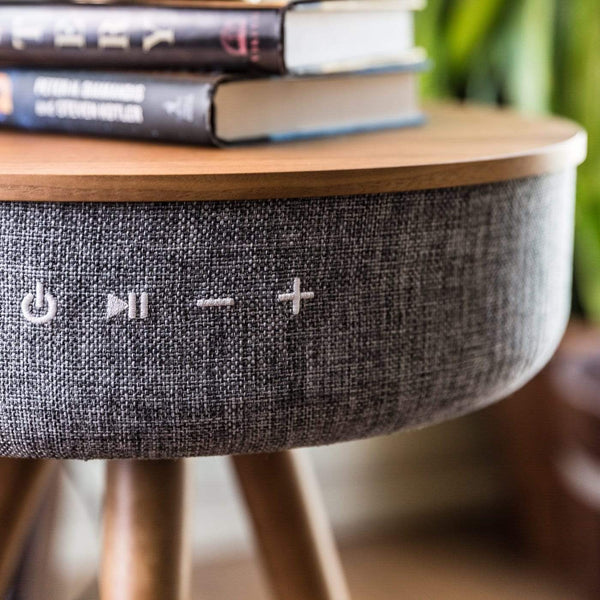 Hikari Speaker Table