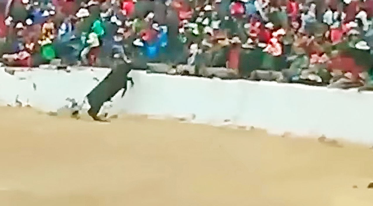 Pissed Off Bull Jumps Into Crowd After Being Taunted?? This is TERRIFYING!! | Country Music Videos