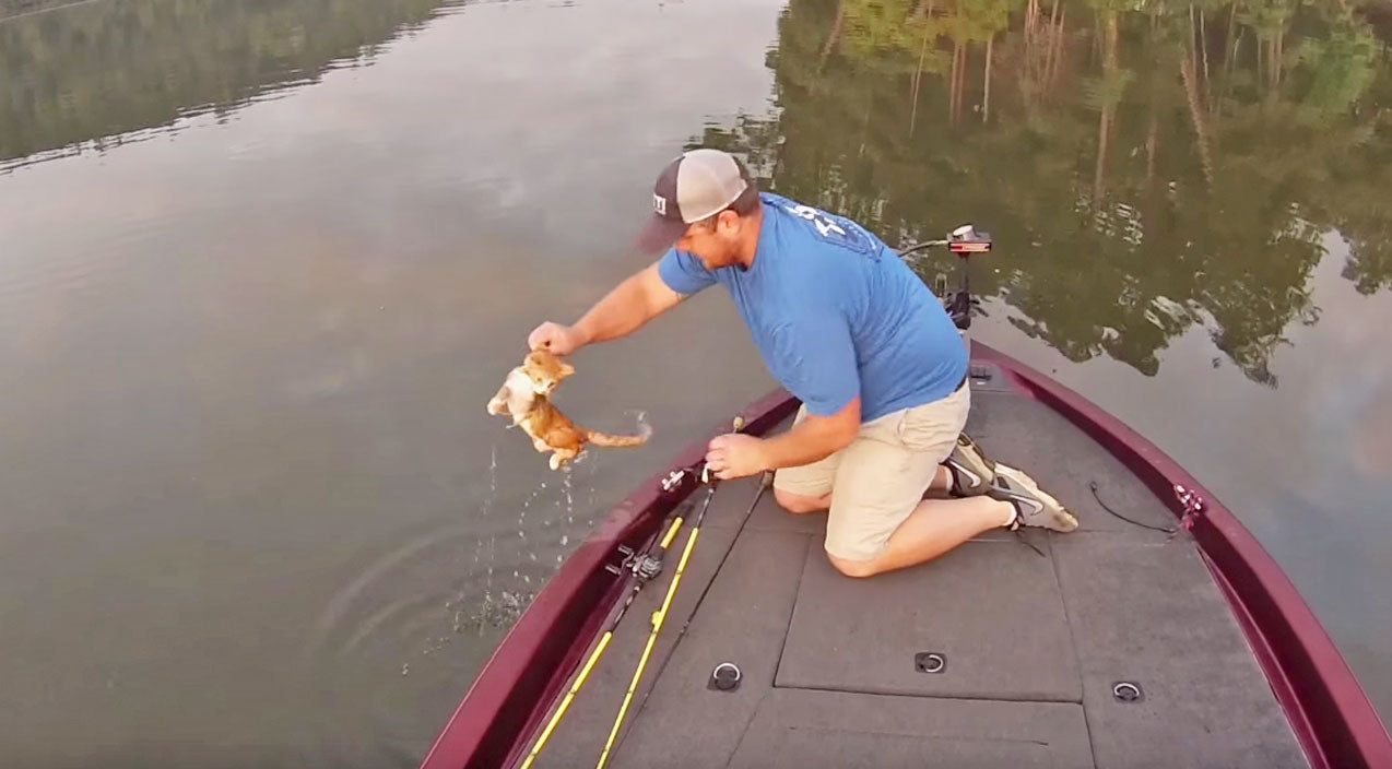 Animals Songs | Alabama Fishermen Take 'Catfishing' To A Whole New Level | Country Music Videos