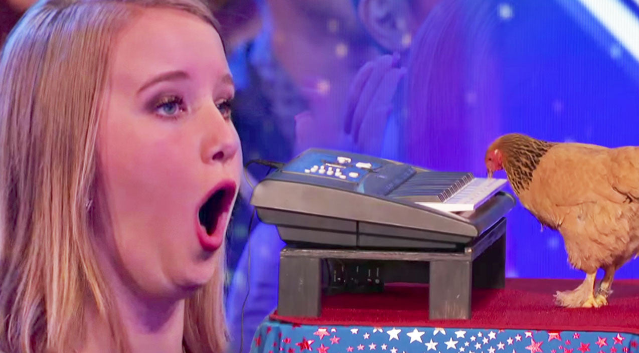Viral content Songs | Audience Boos Weird Act...But Then A Chicken Starts Playing The Piano? Hysterical | Country Music Videos