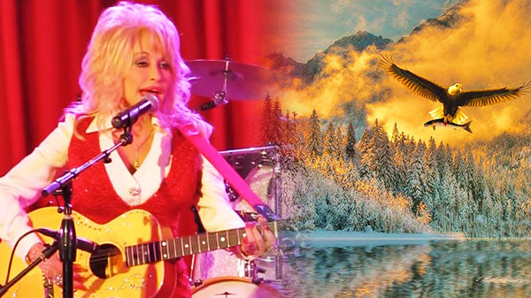 Dolly parton Songs | Dolly Parton - Try (LIVE in Concert) | Country Music Videos