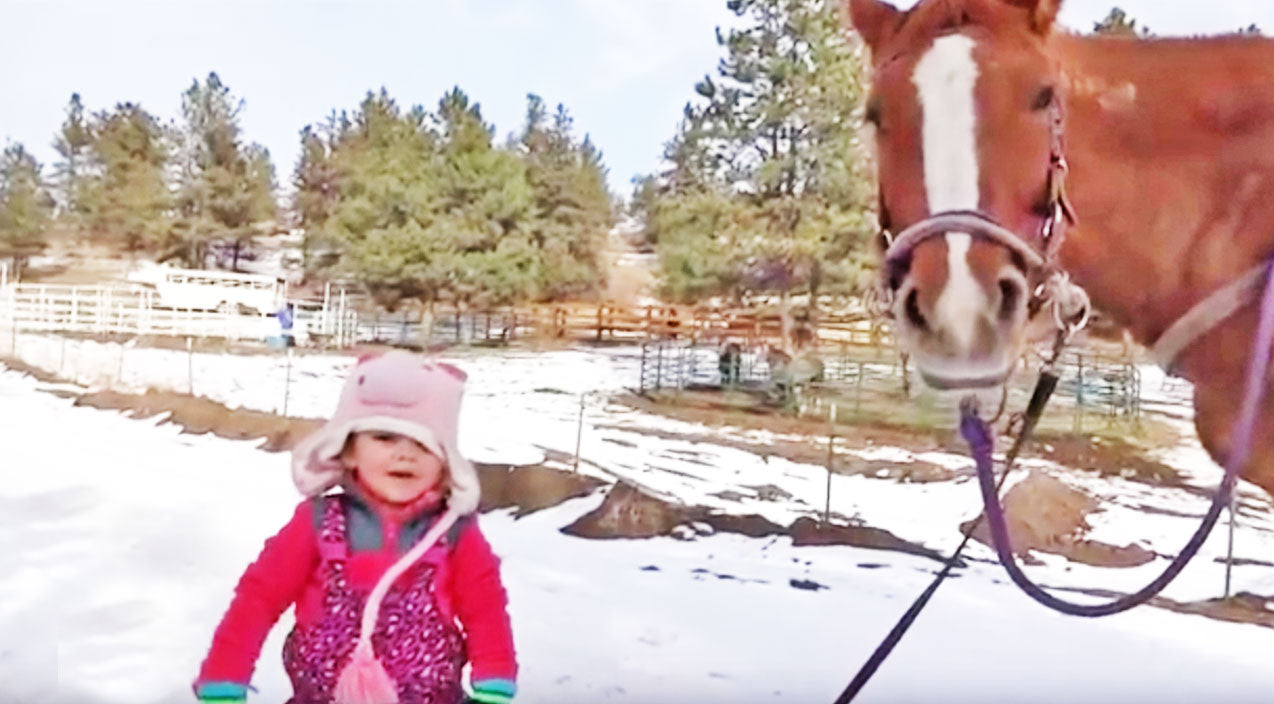 2-Year-Old Emma & Massive Horse Are Best Friends?! This is ADORABLE! | Country Music Videos