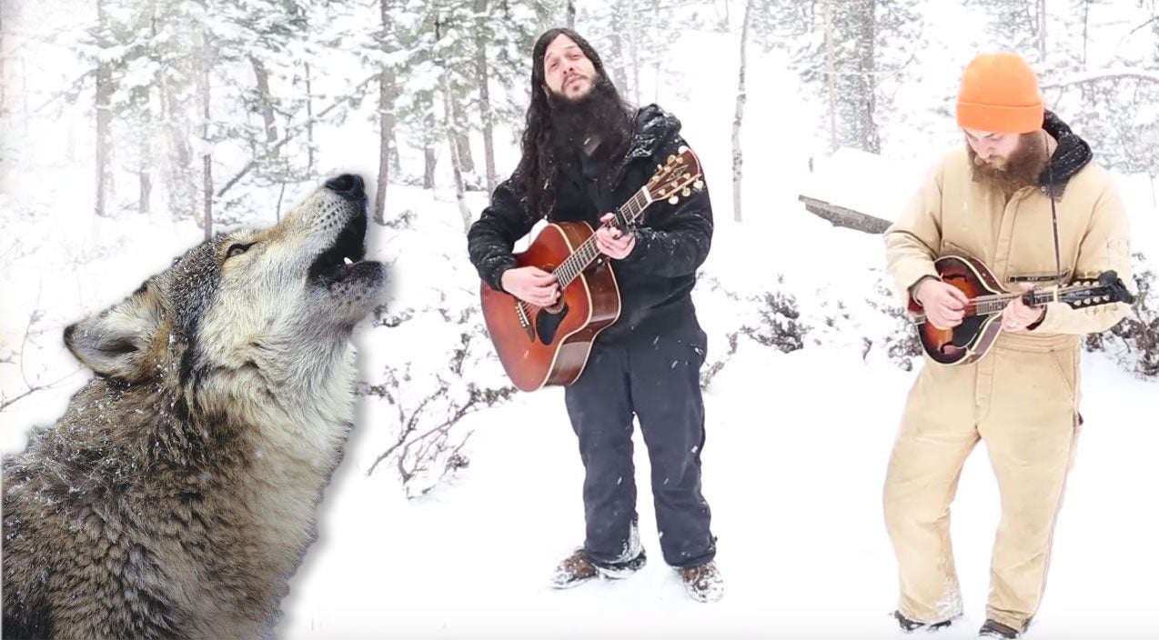 Wolves Provide Backup Vocals During Rocky Mountain Folk Duet | Country Music Videos