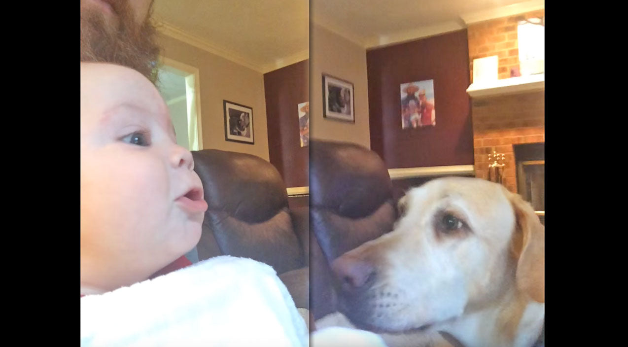 ADORABLE ALERT: 5 Month Old Baby Challenges Family Dogs To Howling Competition | Country Music Videos