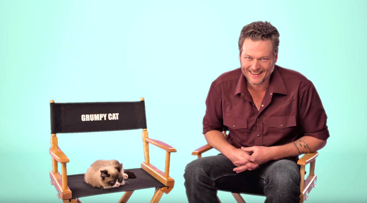 Blake shelton Songs | Grumpy Cat Is Unamused By Blake Shelton's Jokes | Country Music Videos