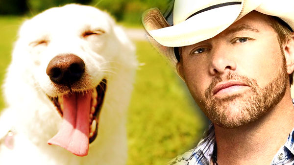 Toby keith Songs | Toby Keith - Every Dog Has Its Day (VIDEO) | Country Music Videos