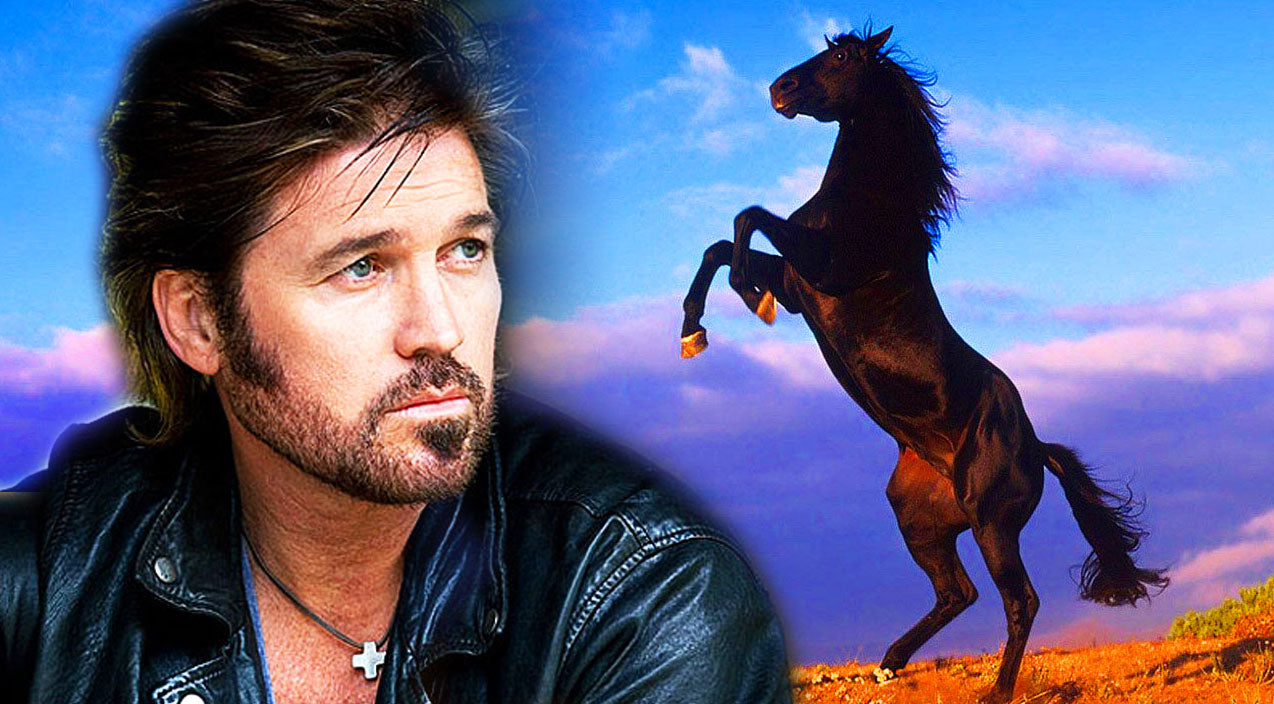 Classic country Songs | Horse Line Dancing To Billy Ray Cyrus'