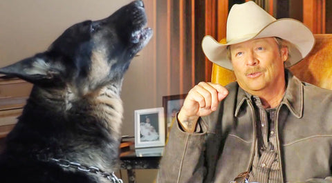 Classic country Songs | Dog Pays An Emotional Tribute To Alan Jackson's 'Remember When' | Country Music Videos
