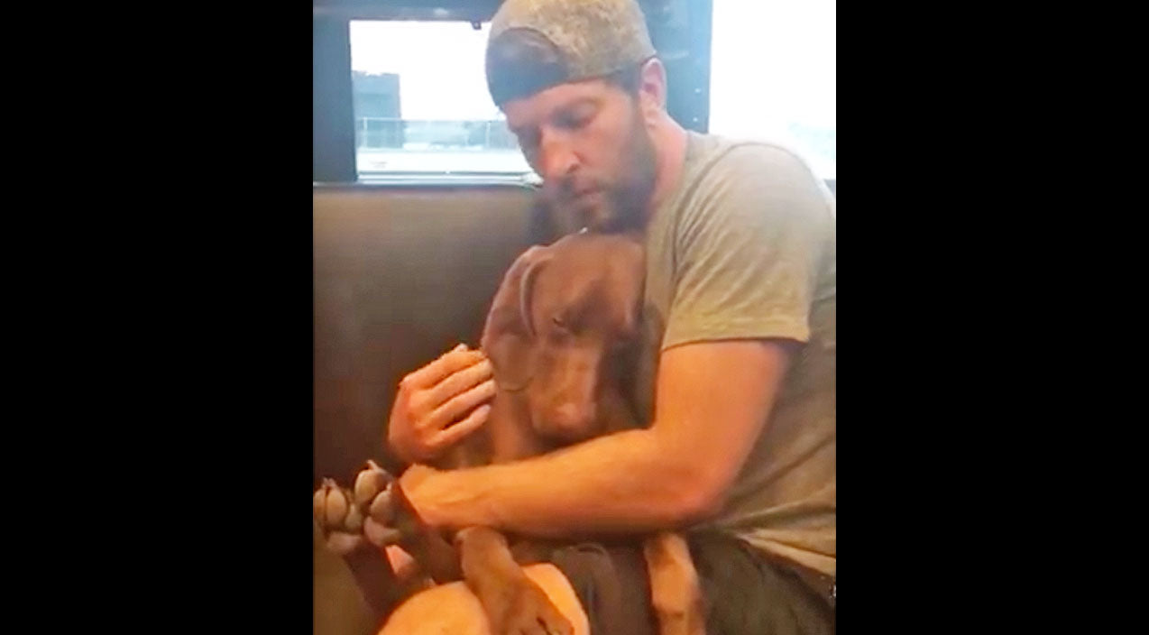 Brett eldredge Songs | Puppy Passes Out When Country Star Sings 'You Are My Sunshine' And It's Adorable | Country Music Videos
