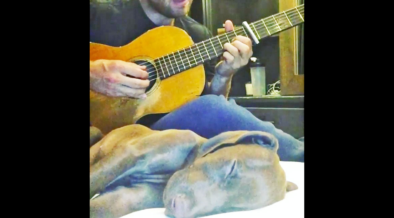 Modern country Songs | Country Heartthrob Serenades His Puppy To Sleep With 'Make You Feel My Love' And It's Adorable | Country Music Videos