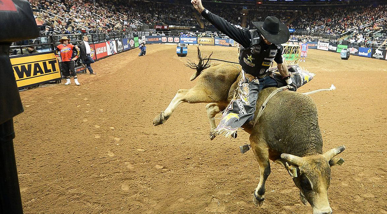 Viral content Songs | Bull Rider Lands Epic Dismount You Have To See To Believe | Country Music Videos