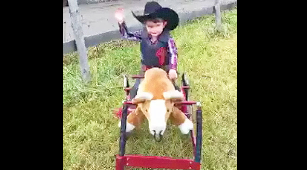 This Little Cowboy Tries To Climb Onto Toy Bull. What Happens Next? I Can't Stop Smiling! | Country Music Videos