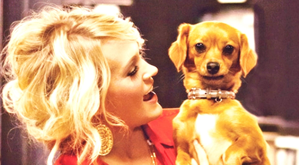 Modern country Songs | Carrie Underwood Attempts To Prove Her Adorable Rescue Dog Is 'Naughty' | Country Music Videos