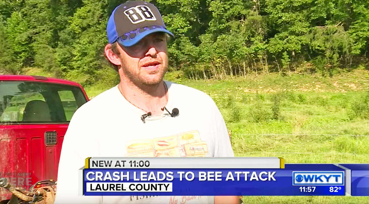 Local Farmer's Hysterical Interview On Bee Attack Is As Country As It Gets | Country Music Videos