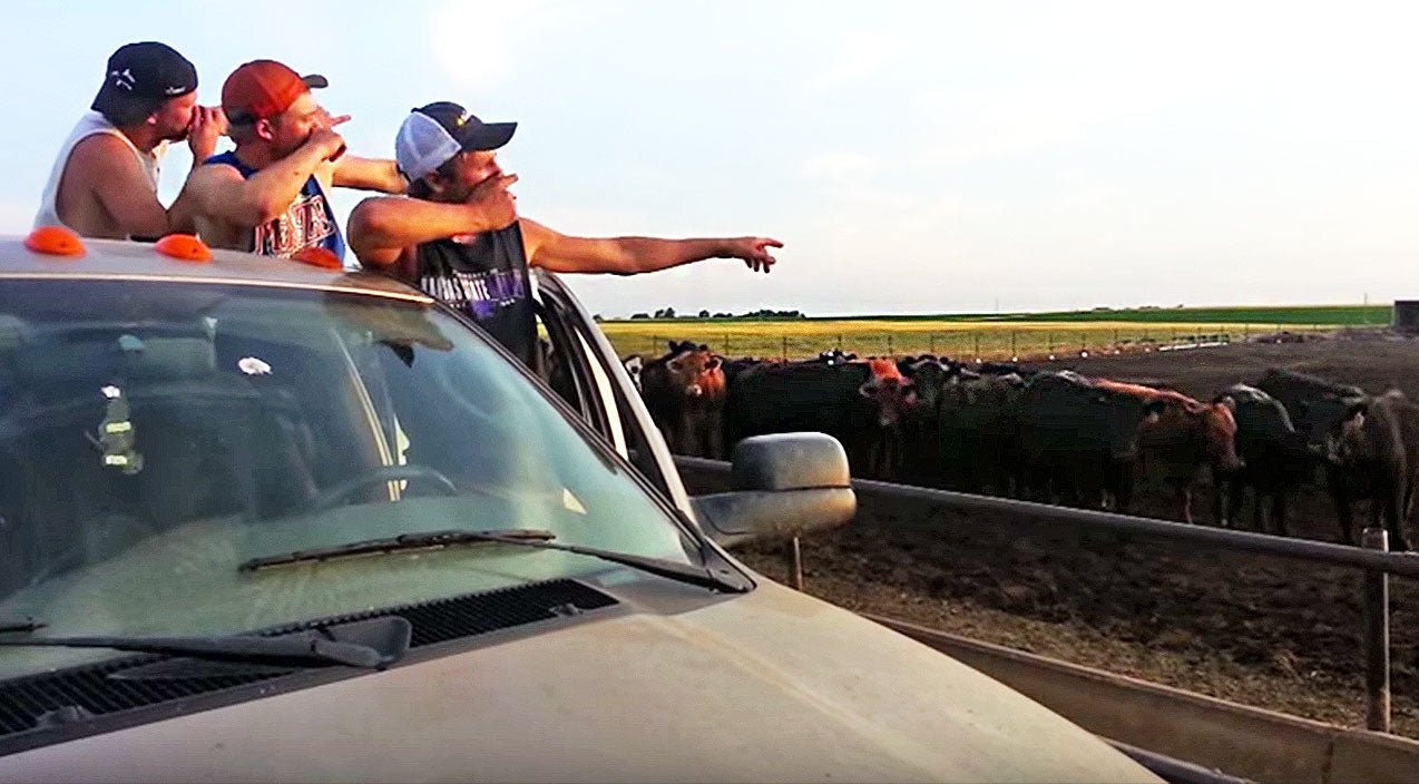 Viral content Songs | Hunky Farm Boys Turn 'Fresh Prince' Theme Song Into Redneck Masterpiece | Country Music Videos