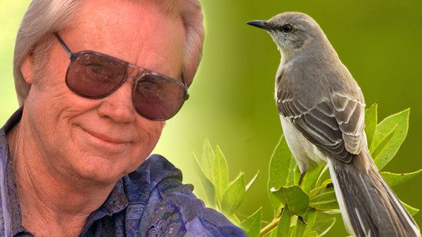George jones Songs | George Jones and Gene Pitney - Mocking Bird Hill (WATCH) | Country Music Videos