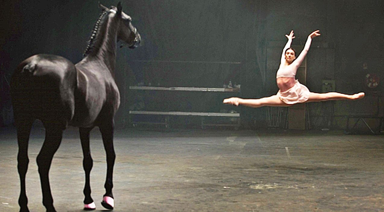 Animals Songs | When A Ballerina Has A Dance-Off Against A Horse, What Happens Next Will Blow Your Mind | Country Music Videos