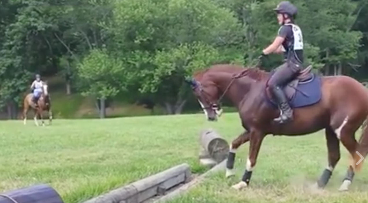 Horse's Hysterical Attempt At Jumping Over An Obstacle Will Leave You In Stitches | Country Music Videos